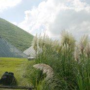 シャボテン公園、温室の中は熱帯です