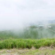 大室山山頂は雲の中